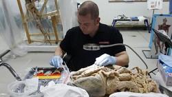 Museum Body Worlds berkeliling dunia menunjukkan model peraga dari jenazah manusia asli. Tujuannya untuk memberikan edukasi tentang bagaimana tubuh bekerja.