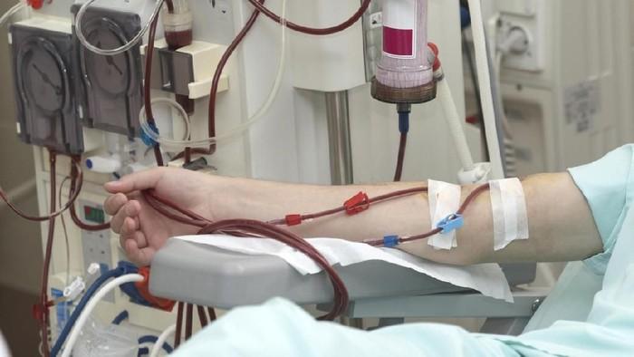Cuci darah wajib hukumnya dilakukan bagi pengidap gagal ginjal. (Foto: iStock)