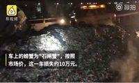 Gara-gara Truk Rusak, Dua Ton Kepiting Terpanggang di Jalan Raya