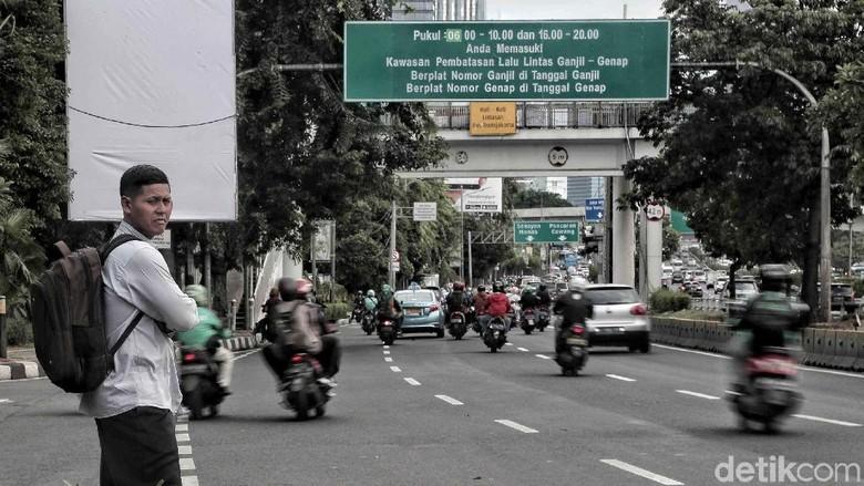 Kawasan ganjil genap Jakarta Foto: Pradita Utama