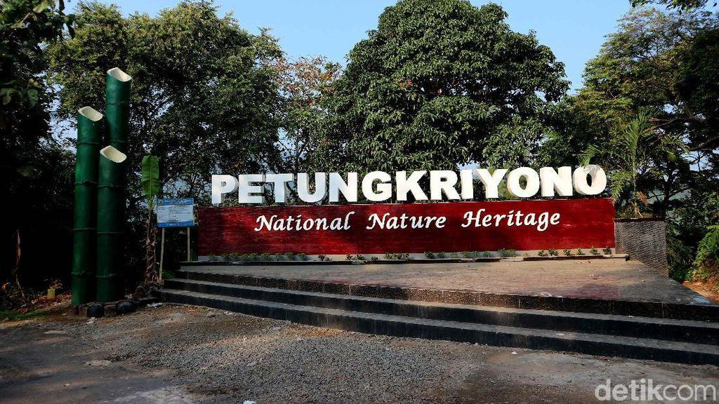 Terpesona Alam Petungkriyono yang Indah di Pekalongan
