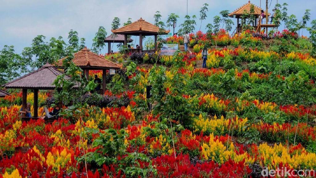 Mau Liburan Murah Awal Tahun di Kabupaten Batang, Ini Tempatnya