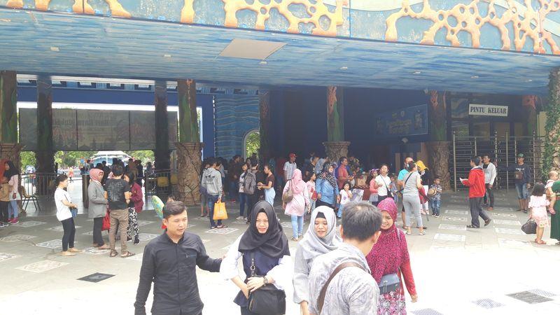 Destinasi baru di Surabaya ini menyuguhkan berbagai wahana seru gabungan waterpark dan theme park. Ada yang bertema dunia bawah laut, dinosaurus hingga es (Hilda Meilisa Rinanda/detikTravel)