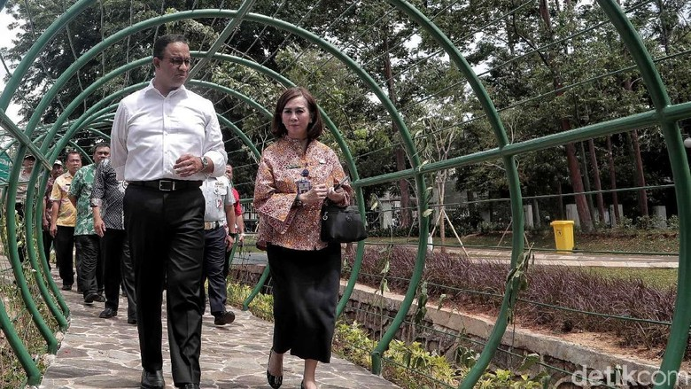 Anies Baswedan Tinjau Taman Tebet yang Bakal Direvitalisasi