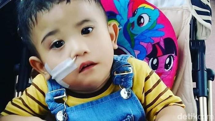Yuk bantu Adelio sembuhkan penyakit langka! Foto: Frieda Isyana Putri/detikHealth
