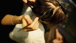 Ada beberapa salon menawarkan paket perawatan rambut yang tidak biasa menggunakan air mani banteng. Tujuannya untuk rambut yang lebih sehat dan indah.