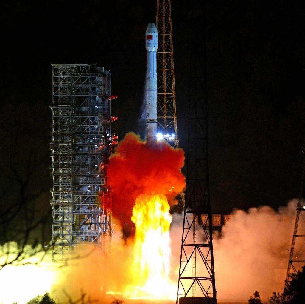 Wah! Benih Kapas yang Dibawa China ke Bulan Berhasil Tumbuh