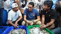 Di Tarakan, Sandi Dengarkan Keluh Kesah Petambak Udang dan Kepiting