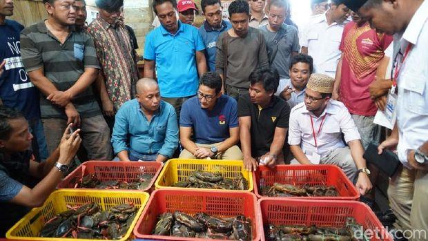 Cawapres Sandiaga Uno saat berkampanye di Tarakan, Kalimantan Utara.