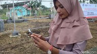 Telkomsel-XL Axiata Menang Tender 4G, Ke Mana Indosat-Tri?