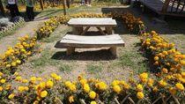 Foto: Taman Bunga di Kaki Gunung Agung