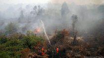 Cegah Kebakaran Hutan, Ilmuwan Dengarkan Suara Hutan
