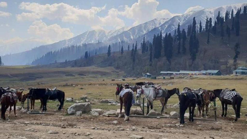 Foto-foto Kashmir yang Menakjubkan
