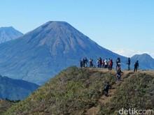 Ingin Daki Gunung Prau di New Normal? Ketahui Ini Dulu Ya...