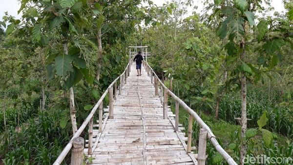 Traveler bisa melanjutkan perjalanan dengan berjalan kaki guna mencapai puncak Gunung Gede dengan menggunakan jembatan dari bambu (Pradito Rida Pertana/detikTravel)