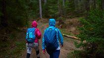 Turis Asyik Hiking Seminggu, Balik-balik Eh Kena Lockdown