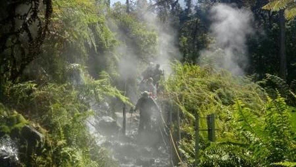 Gunung Gede Pangrango Tutup Pendakian Jelang Tahun Baru dan Prau Menyusul