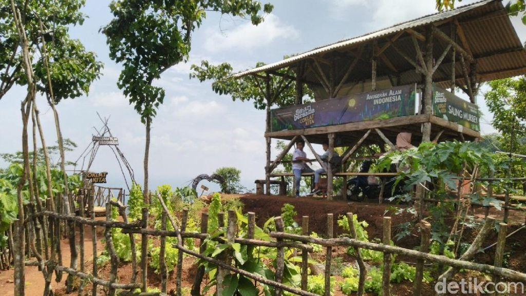 Menikmati Keindahan Agrowisata Alam Murbey di Kaki Gunung Sawal