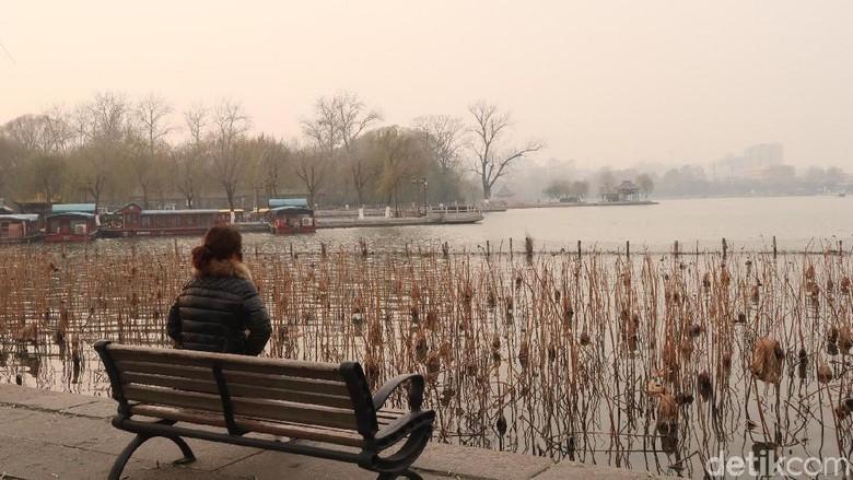 Foto: Taman Lotus di Daming Lake (Bonauli/detikTravel)
