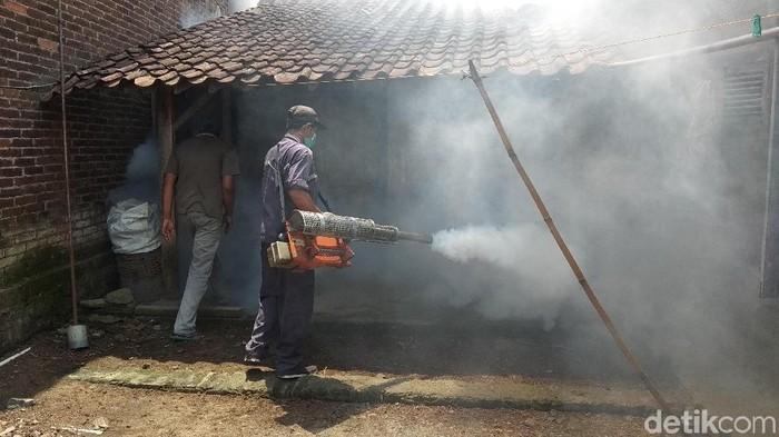 Sepanjang tahun 2018 ada 175 kasus DBD, 2 orang meninggal dunia. Untuk pergantian musim ini, Dinkes Kabupaten imbau lakukan Pemberantasan Sarang Nyamuk (PSN). Foto: Eko Susanto/detikcom