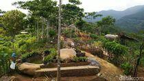 Foto: Pesona Keindahan Agrowisata Alam Murbey di Ciamis