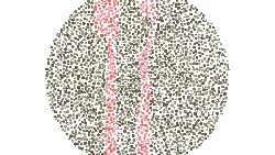 Kalau tes buta warna yang biasa menggunakan angka, tes kali ini menggunakan benda yang biasa ada di lingkungan sehari-hari. Coba tebak semua benda berikut.