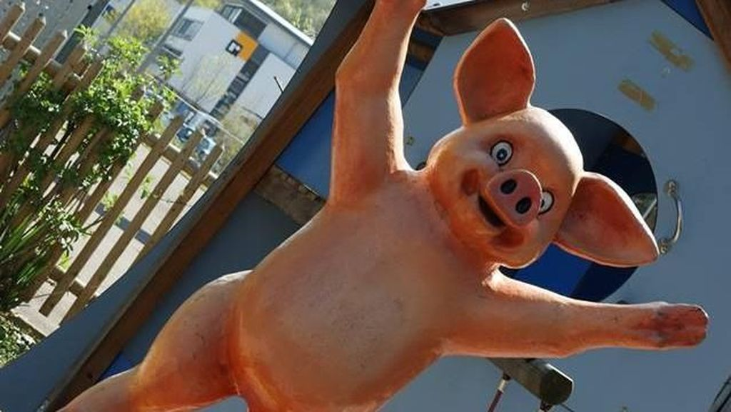 Di Jerman Ada Museum Babi, Apa Isinya?