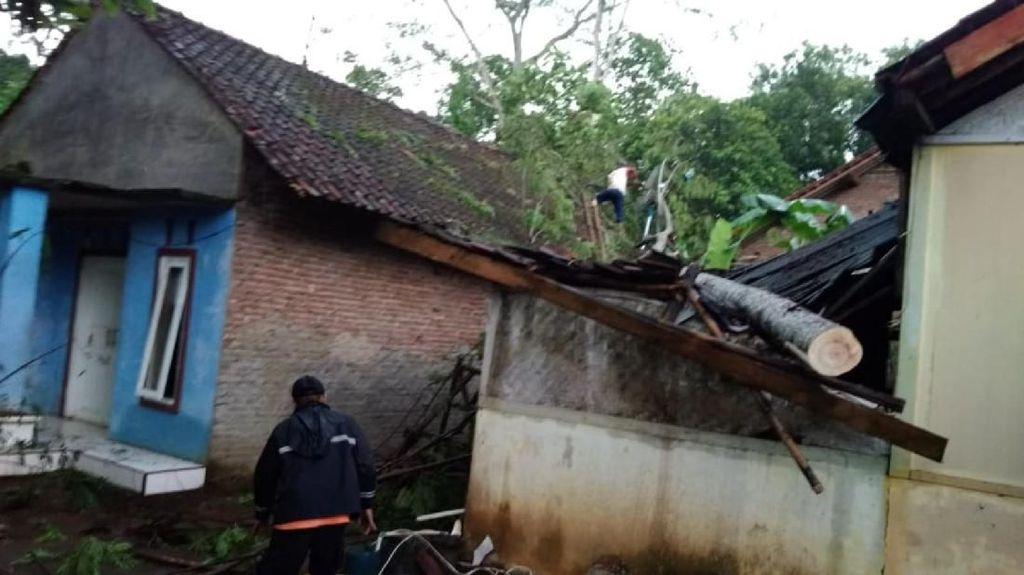 11 Rumah Tertimpa Pohon Tumbang di Banjar