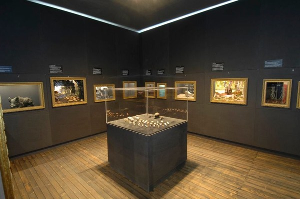 Di saat-saat tertentu, pihak museum juga menggelar acara interaktif. Seperti pameran temporer, festival, dan aneka acara lainnya (Schweinemuseum/Facebook)