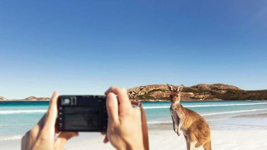 Jumlah Wisatawan ke Australia Barat Naik Tapi Tingkat Belanja Turun