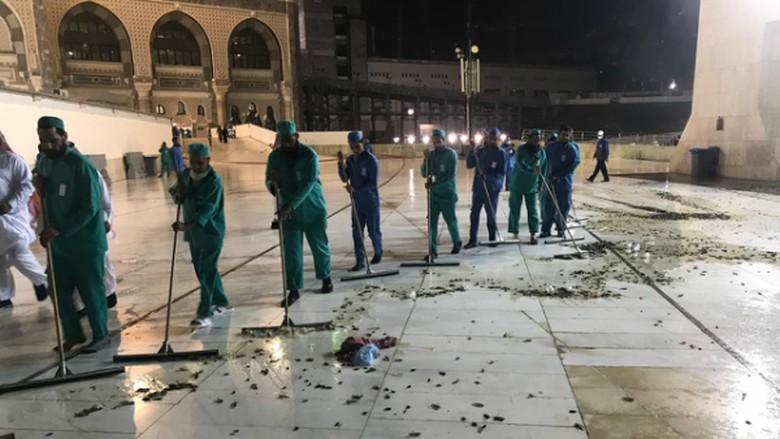 KJRI Jeddah: Jangkrik di Masjidil Haram Tak Berbahaya