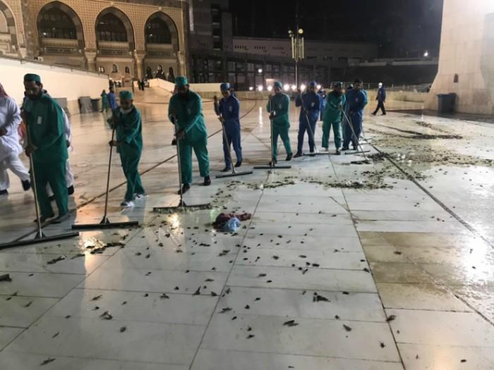 Petugas membersihkan serangga yang menyerbu Masjidil Haram di Mekah (Morocco World News)