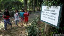Penampakan Terkini Taman Langsat Jelang Direvitalisasi