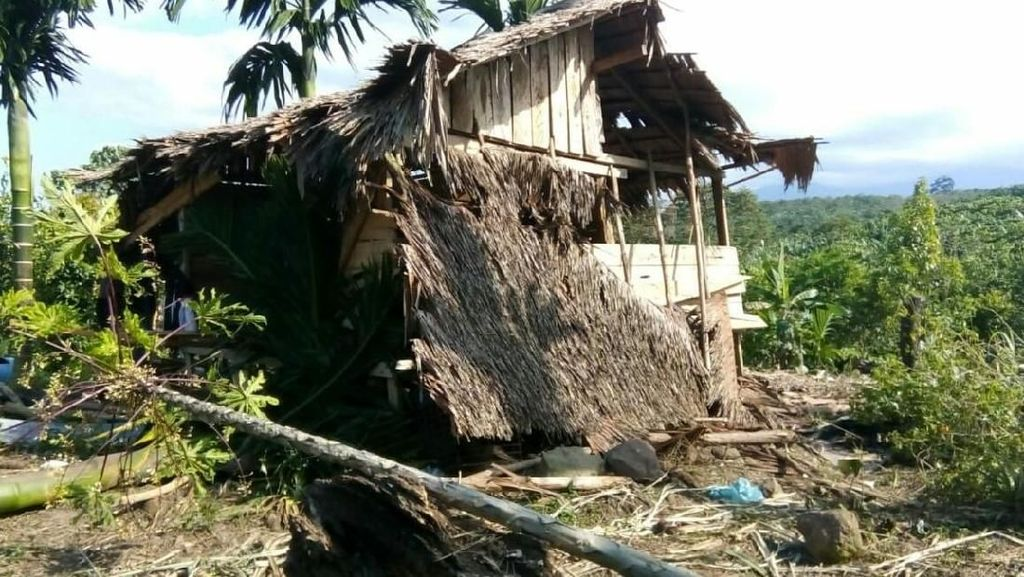Gajah Liar Rusak Perkebunan Warga di Aceh Utara, Warga Cemas