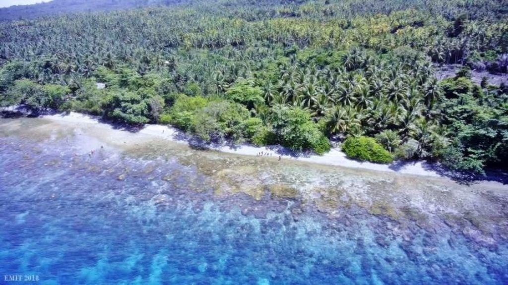 Sekali Seumur Hidup, Mesti Datang ke Pulau Bacan!