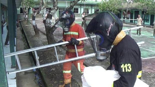 Dengan peralatan seadanya, petugas Damkar Maros mengevakuasi sarang tawon tersebut.