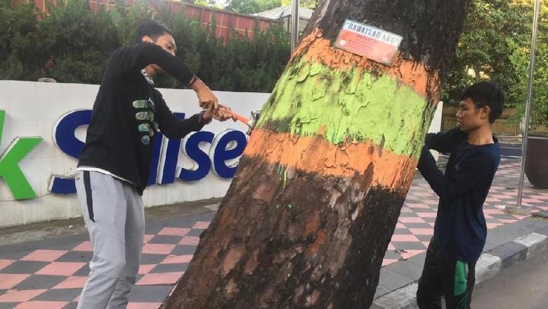 Peringati Hari Sejuta Pohon, Warga di Makassar Gelar Aksi Cabut Paku