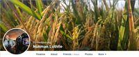 Profil dari akun Facebook milik Nukman Luthfie.