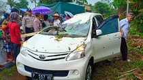 2 Penumpang Mobil di Banyuwangi Luka akibat Tertimpa Pohon Tumbang
