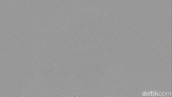 Gambar-gambar tokoh ini disembunyikan dengan pola geometri. Kamu bisa menemukannya dengan menyesuaikan jarak layar dan menggelengkan kepala dengan cepat.