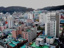 Bangun Ibu Kota Baru, RI Tiru Gaya Busan