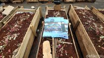 Aksi Kubur Diri Sopir Tangki Pertamina di Depan Istana