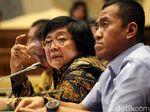 Menteri Siti Lapor ke Jokowi soal Kebakaran Hutan: Ada Api Langsung Dimatiin