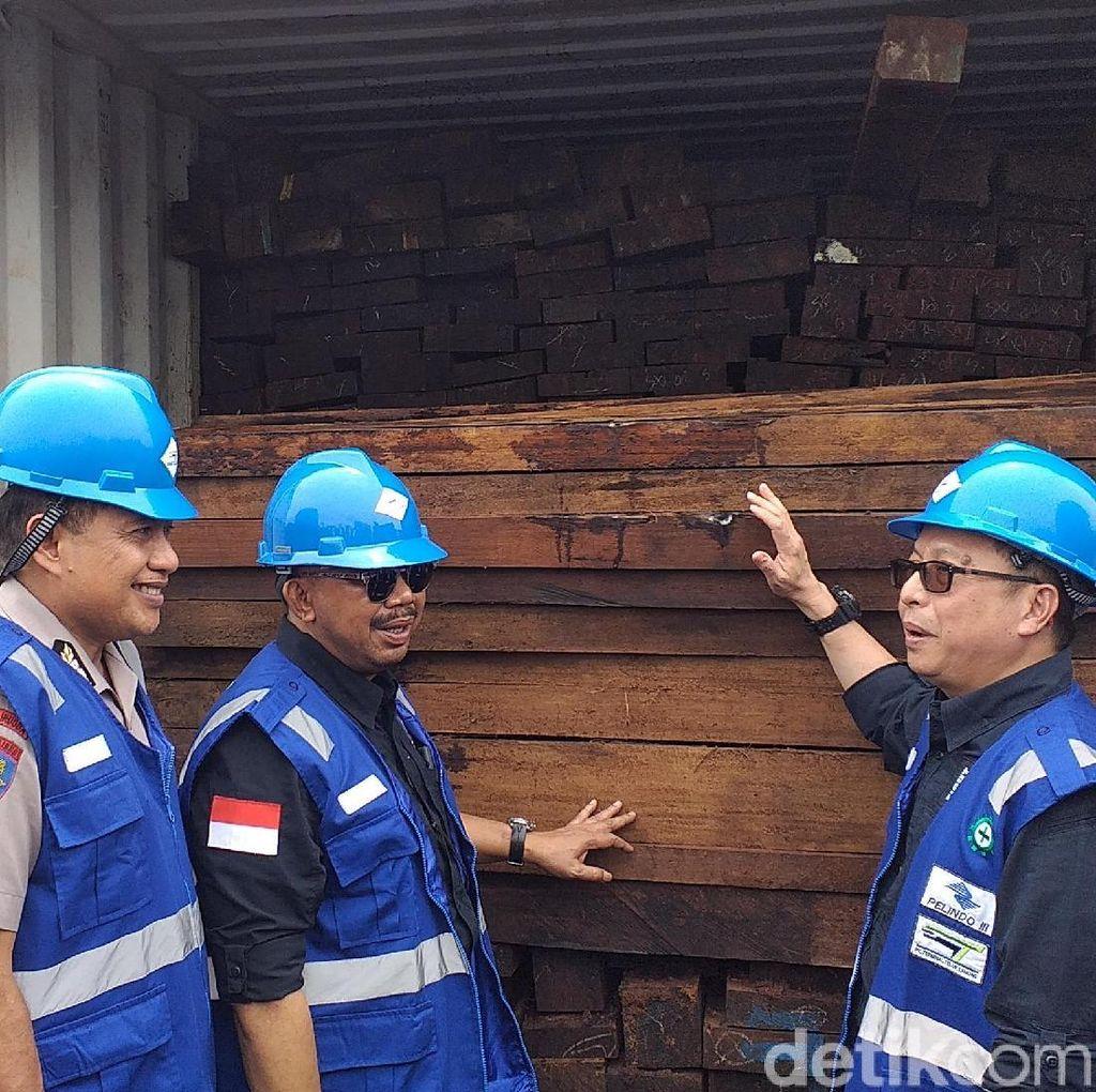 Kayu Ilegal Senilai Rp 100 Miliar Asal Papua Diamankan