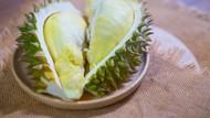 Keren! Es Krim Durian Asal Sumut Tembus Pasar Global hingga Ke Brasil