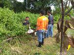 Mayat Dalam Tong yang Ditemukan Pemulung Terbungkus Kain Putih
