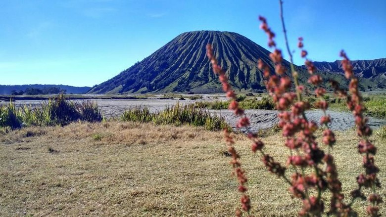 Gunung Bromo (Diajeng Kinanti Widowati/dTraveler)