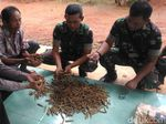 Warga Banyumas Temukan 800 Amunisi Diduga dari Masa Agresi Militer