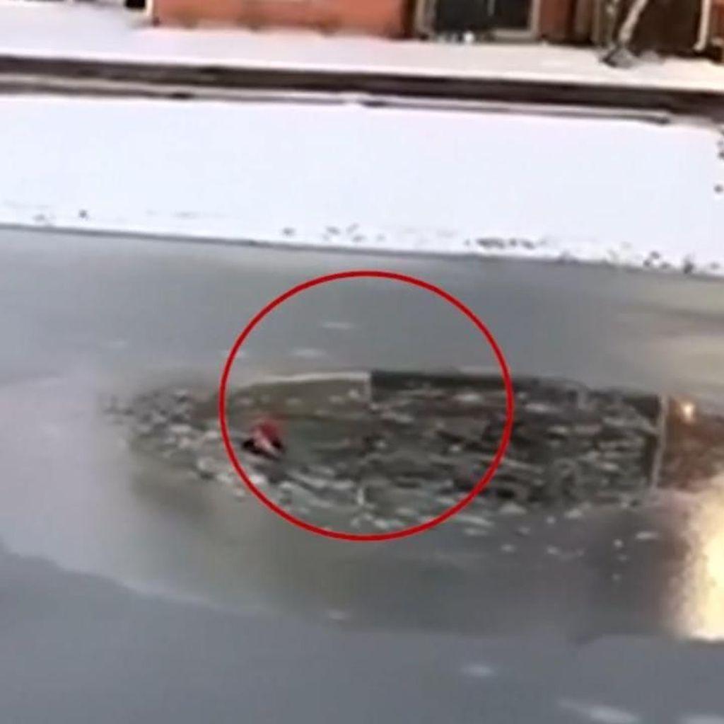 Aksi Heroik Penyelamatan Bocah yang Terjebak di Kolam Es