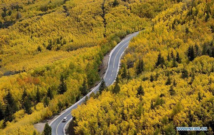 Tibet telah mencanangkan untuk membangun dan meningkatkan 4.500 kilometer jalan pedesaan untuk menghubungkan semua kota dan desa pada akhir 2019. Xinhuanet/Istimewa.
